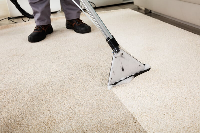 The Difference In Carpet Cleaning 14