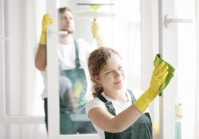 cleaning canstockphoto56303428